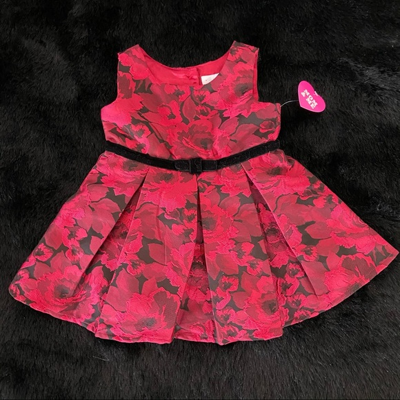 Children's PLACE Baby Dress Formal Red 12-18 mos.